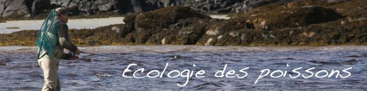 ecologie poissons