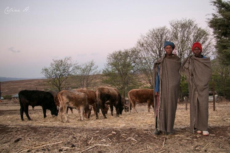 Lesotho22