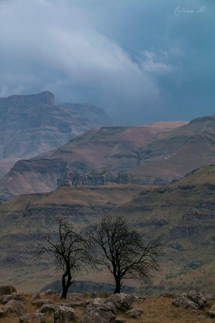 Lesotho73